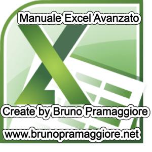 Manuale Excel 2010 avanzato